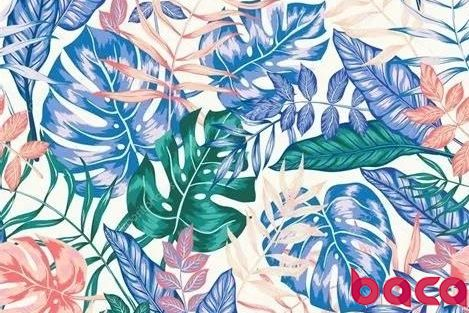 植物纹理印刷术,留下秋天的印记:BACA艺术工作坊招募 | BACA活动