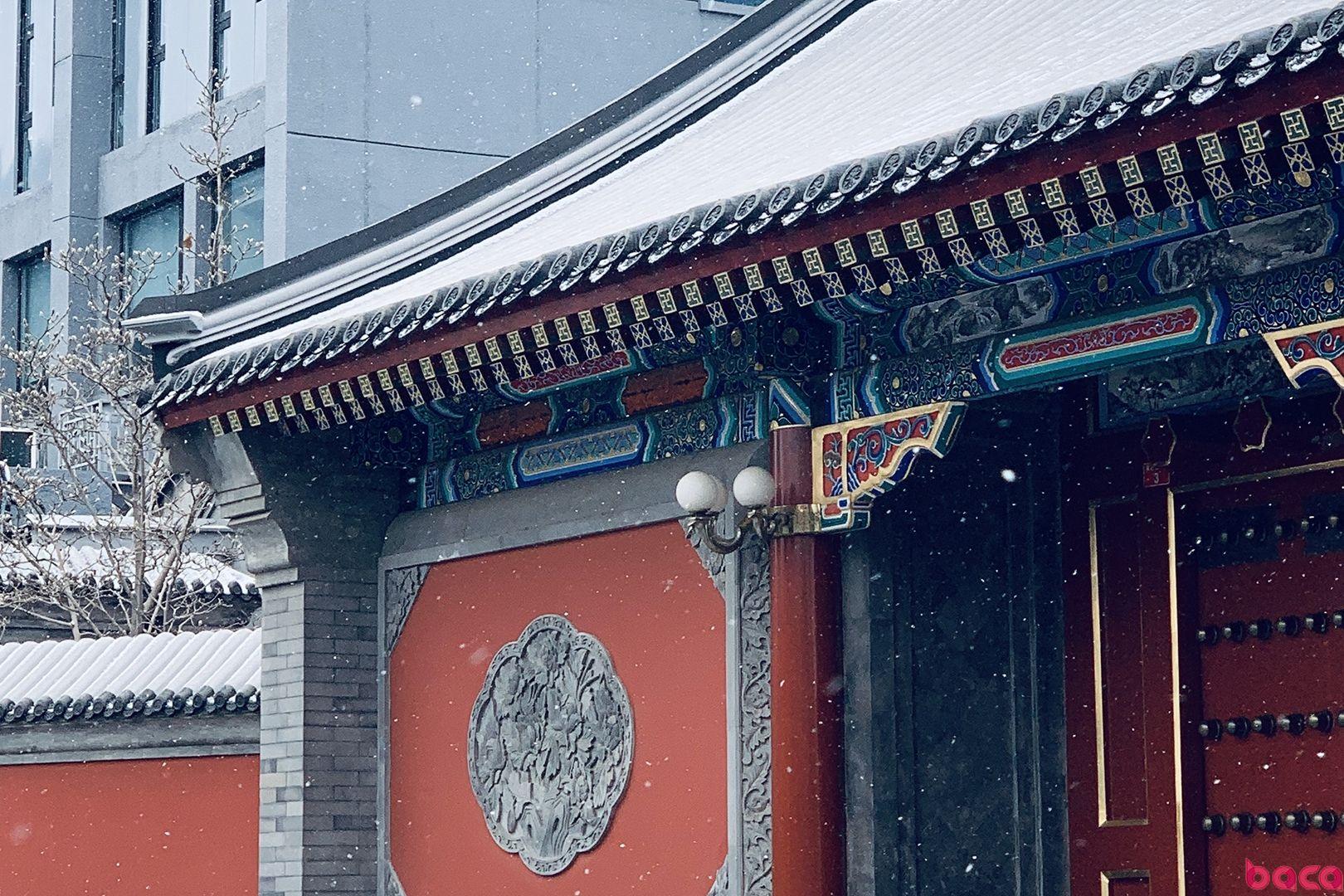 2019北京下雪了!BACA艺术高中生带你赏雪 | BACA资讯