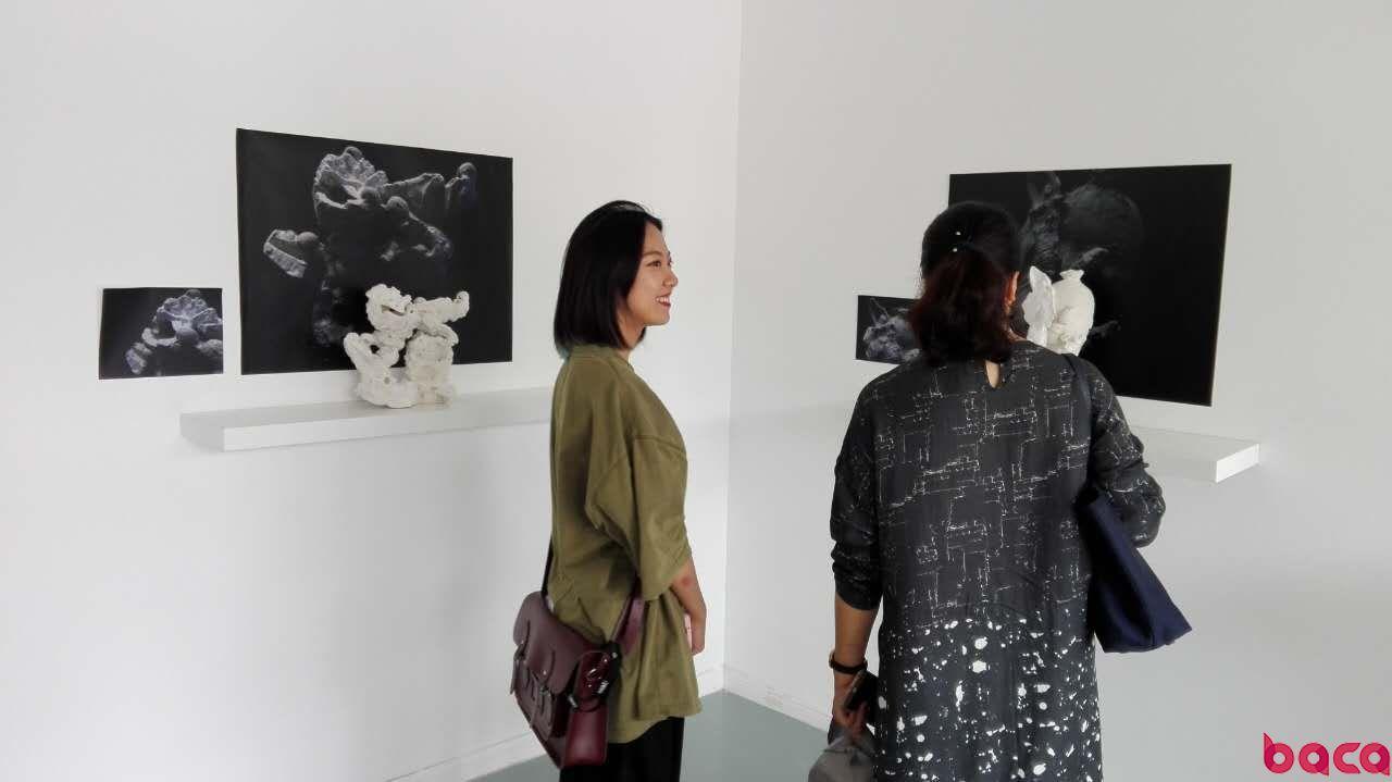 BACA国际艺术预科中心